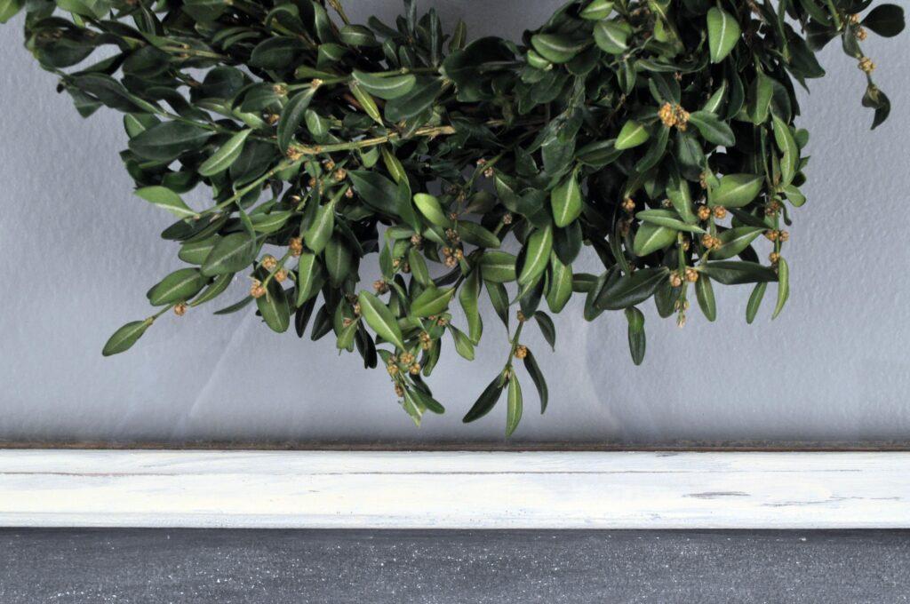 Recycled Boxwood Mini Wreath