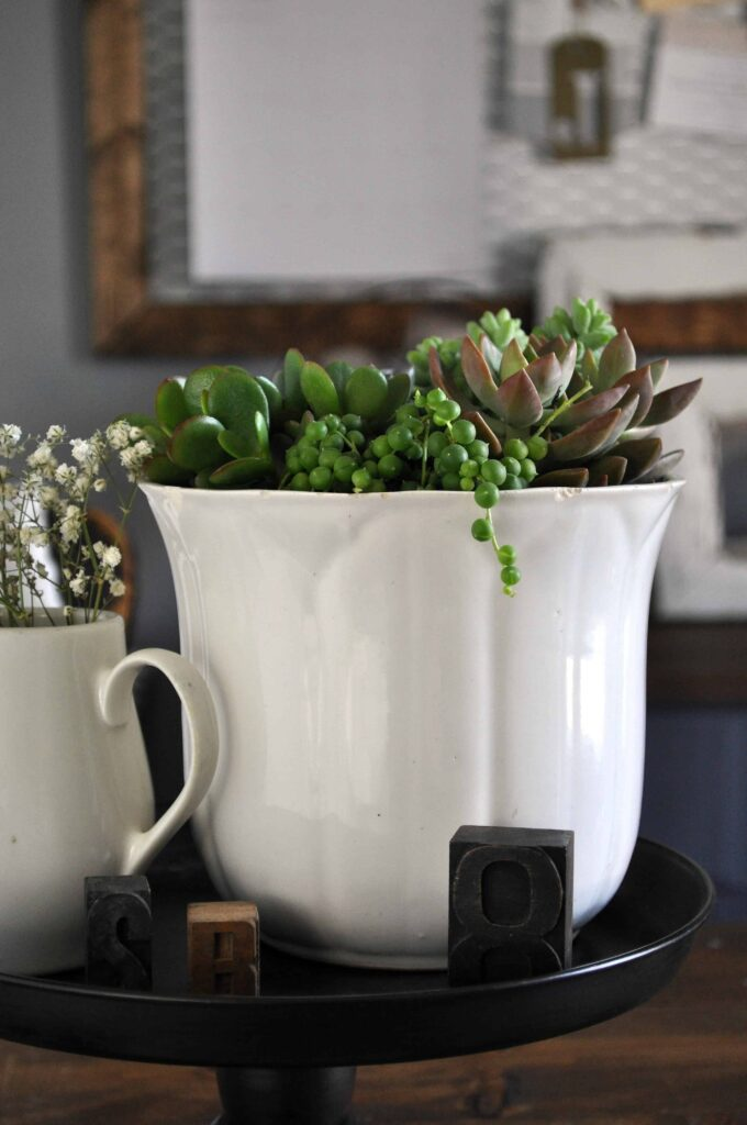 Ironstone Succulent Planter. Office Planter