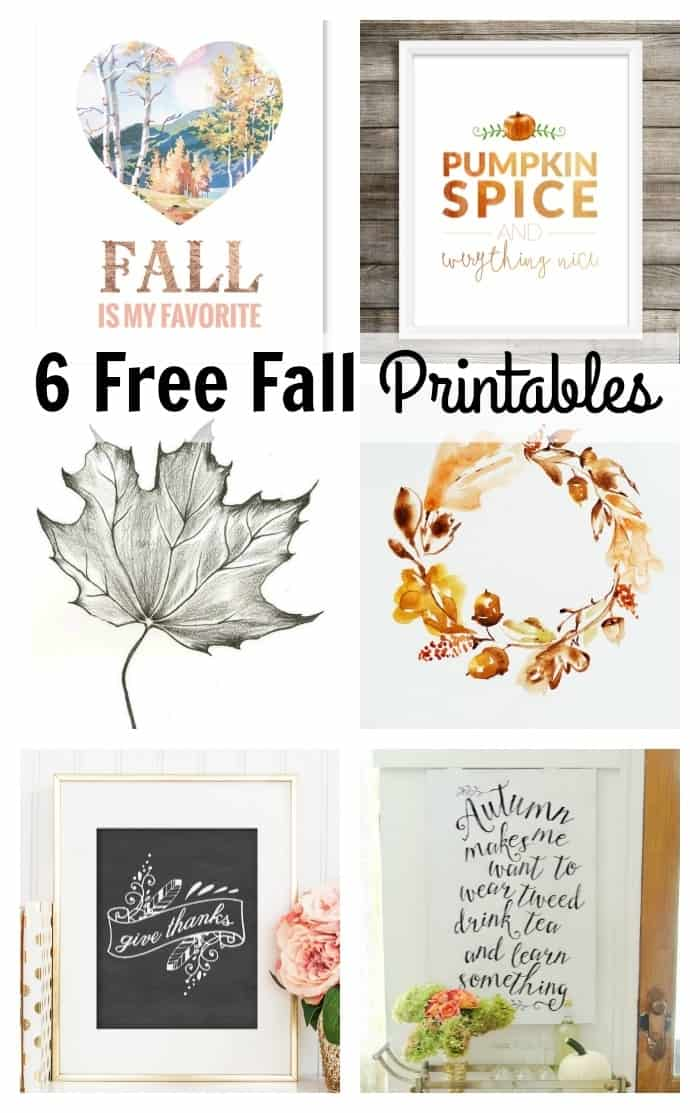 It is a picture of Intrepid Free Fall Printable