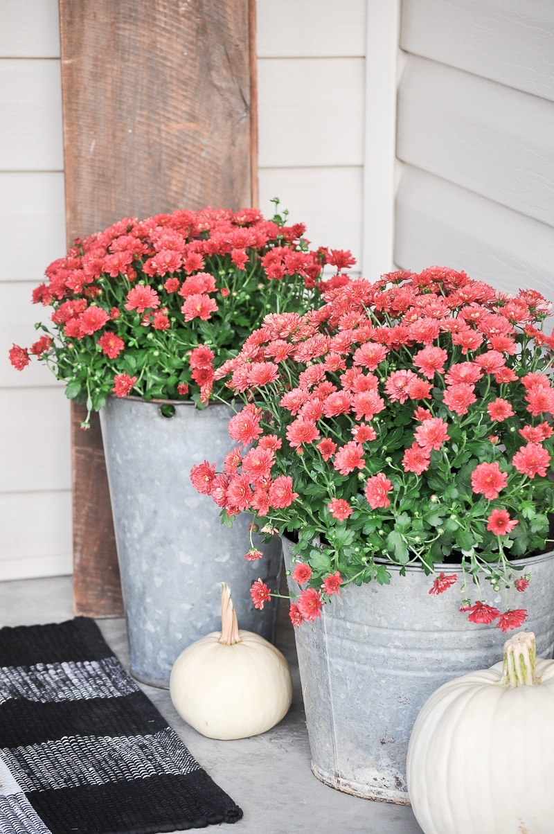 Cozy Fall Front Porch